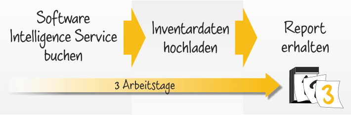 Software Intelligence Service - 3 Arbeitstage
