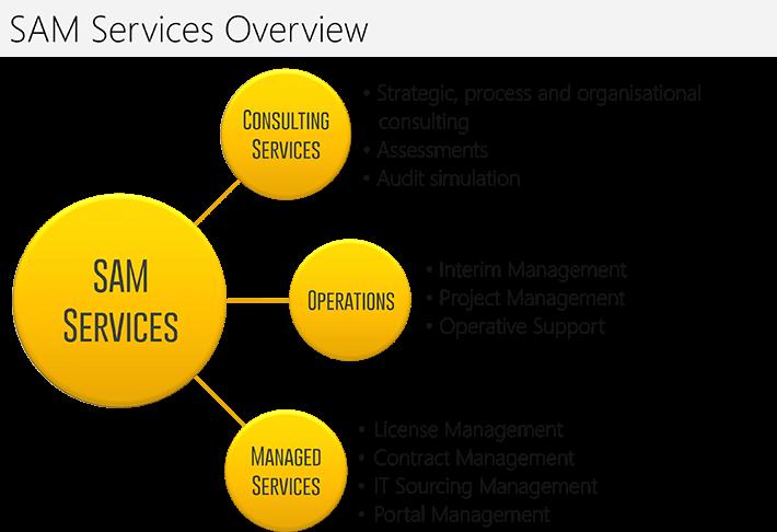 CCP SAM Services: CCP Software GmbH